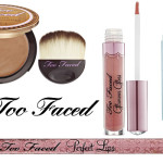 Too Faced Makeup Collection for Summer 2010