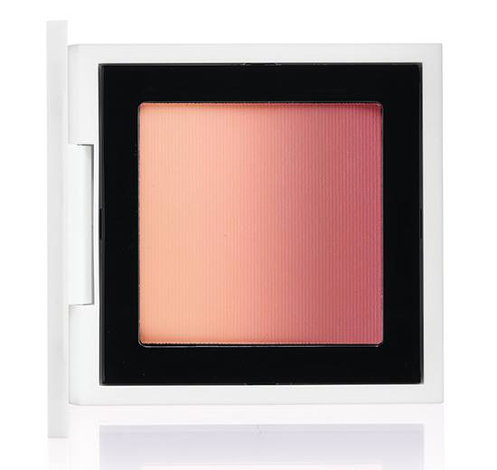 MAC-Isabel-Ruben-Toledo-2015-Collection-10