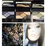 Dior 5 Couleurs Designer Palettes for Summer 2015