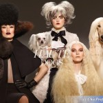 MAC Haute Dogs Collection Fall 2015
