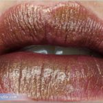 Urban Decay Conspiracy Vice Lipstick Review, Swatches, Photos