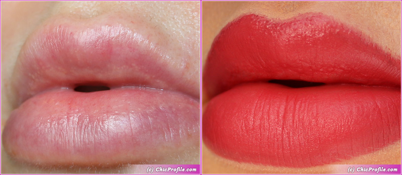 L'Absolu Rouge Intimatte (282) Very French Lip Swatches